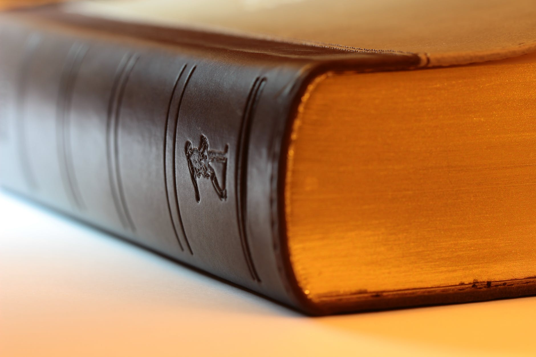 antique bible blur book