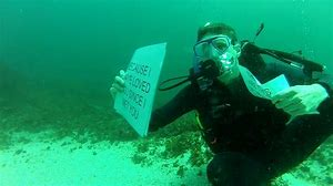Image result for scuba dive, what does it mean