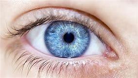 Deficiency in Vitamin B12? Start looking at youreyes!