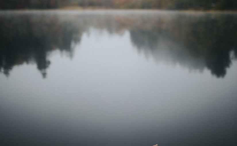 Fall by MwsR
